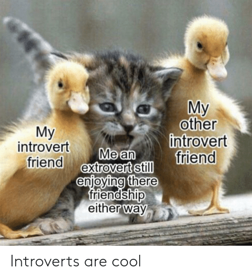 Friendship: My  other  introvert  friend  Мy  introvert  friend extrovert still  Me an  enjoying there  friendship  either way Introverts are cool