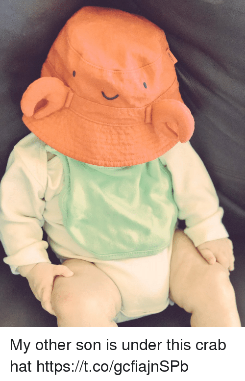 Memes, 🤖, and Crab: My other son is under this crab hat https://t.co/gcfiajnSPb