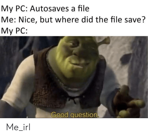 Good Question: My PC: Autosaves a file  Me: Nice, but where did the file save?  Мy PC:  Good question Me_irl