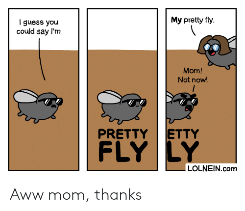 aww: My pretty fly  I guess you  could say l'm  Mom!  Not now!  ETTY  PRETTY  FLY LY  LOLNEIN.com Aww mom, thanks