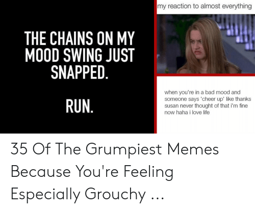 You Re Meme: my reaction to almost everything  THE CHAINS ON MY  MOOD SWING JUST  SNAPPED  when you're in a bad mood and  someone says 'cheer up' like thanks  susan never thought of that i'm fine  now haha i love life  RUN 35 Of The Grumpiest Memes Because You're Feeling Especially Grouchy ...
