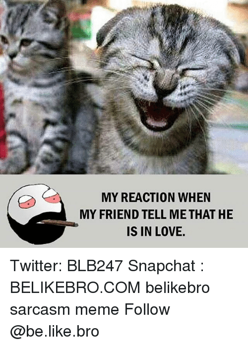 Be Like, Love, and Meme: MY REACTION WHEN  MY FRIEND TELL ME THAT HE  IS IN LOVE. Twitter: BLB247 Snapchat : BELIKEBRO.COM belikebro sarcasm meme Follow @be.like.bro