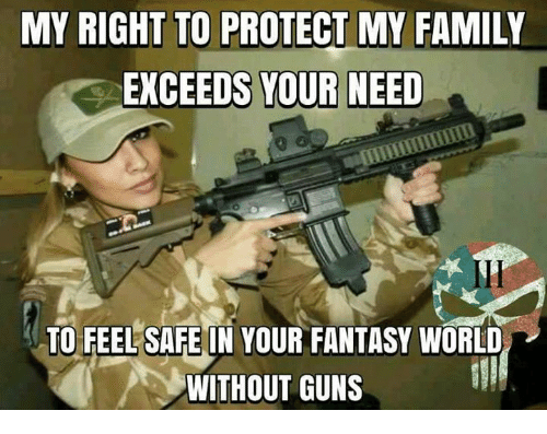 Fantasy World: MY RIGHT TO PROTECT MY FAMILY  EXCEEDS YOUR NEED  TO FEEL SAFE IN YOUR FANTASY WORLD  WITHOUT GUNS
