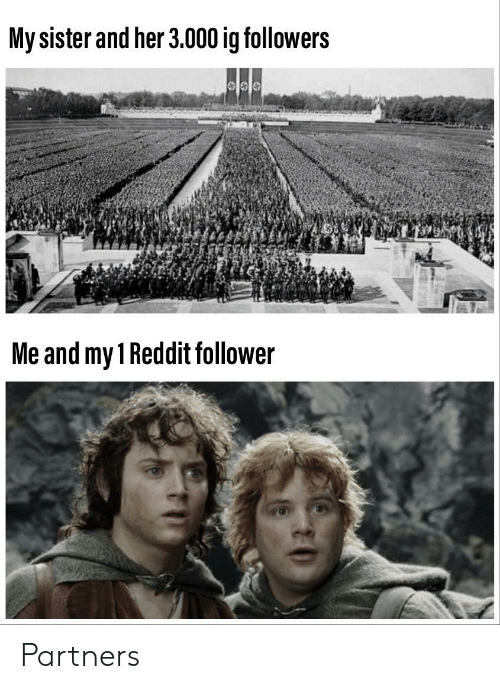 Reddit, Her, and Follower: My sister and her 3.000 ig followers  Me and my 1 Reddit follower Partners