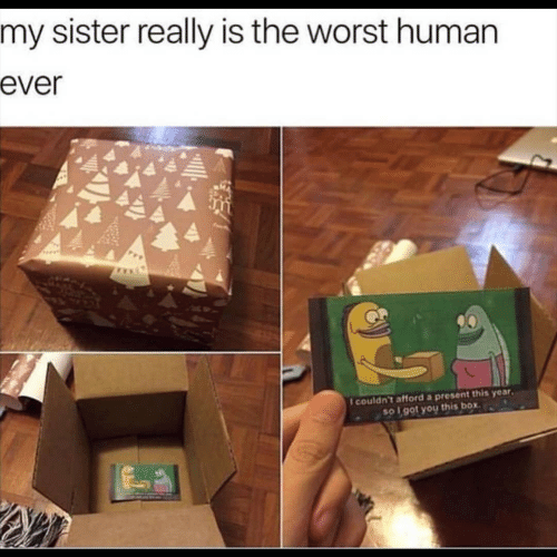The Worst, Human, and Box: my sister really is the worst human  ever  I couldn't afford a present this year,  so Lgot you this box.