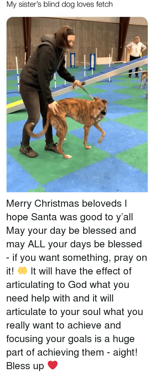 Bless up: My sister's blind dog loves fetch Merry Christmas beloveds I hope Santa was good to y'all May your day be blessed and may ALL your days be blessed - if you want something, pray on it! 🤲 It will have the effect of articulating to God what you need help with and it will articulate to your soul what you really want to achieve and focusing your goals is a huge part of achieving them - aight! Bless up ❤️