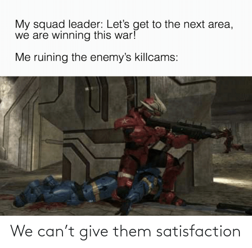 Squad Leader: My squad leader: Let's get to the next area,  we are winning this war!  Me ruining the enemy's killcams: We can't give them satisfaction