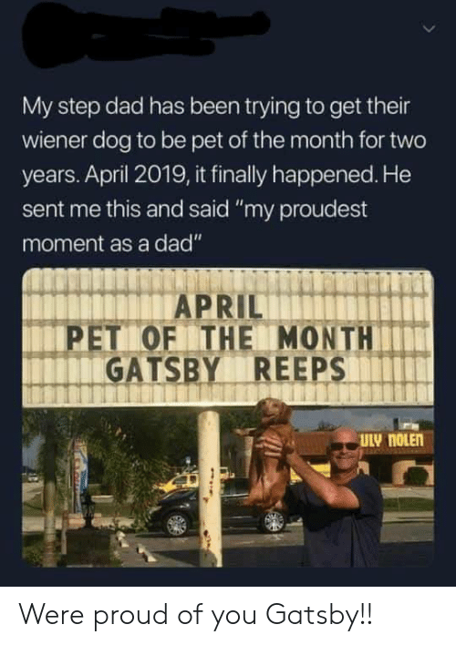 "Dad, Proud, and April: My step dad has been trying to get their  wiener dog to be pet of the month for two  years. April 2019, it finally happened. He  sent me this and said ""my proudest  moment as a dad""  PET OF THE MONTH  GATSBY REEPS Were proud of you Gatsby!!"