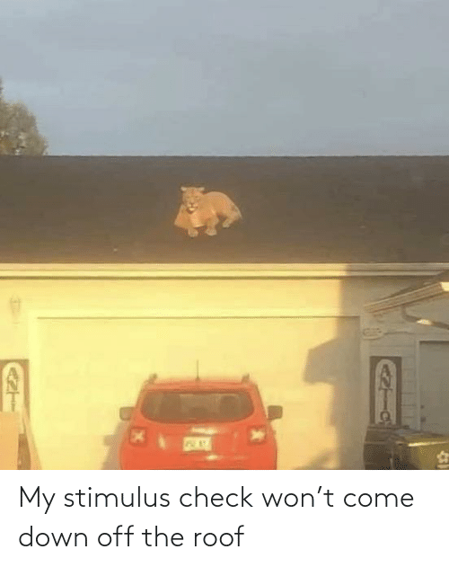 won: My stimulus check won't come down off the roof