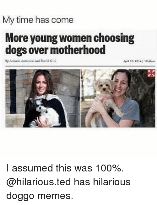 Anaconda, Dogs, and Memes: My time has come  More young women choosing  dogs over motherhood  By Antonio Aateecci and David K  Aon 1o 2014 1 1046 I assumed this was 100%. @hilarious.ted has hilarious doggo memes.