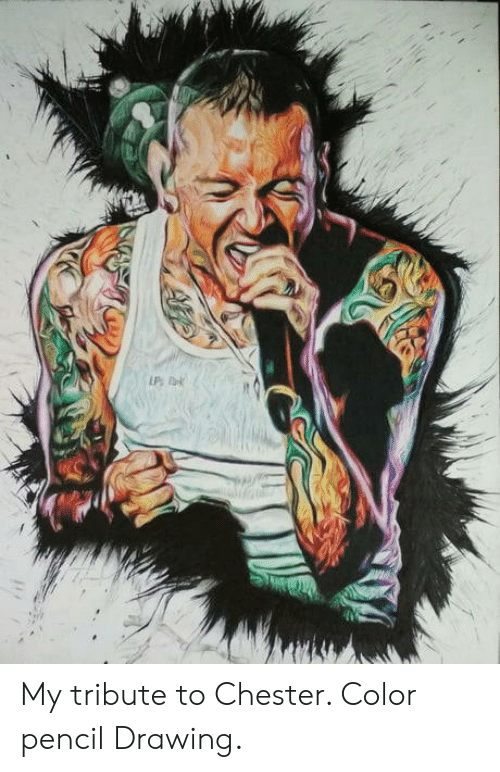 Color, Chester, and Drawing: My tribute to Chester. Color pencil Drawing.