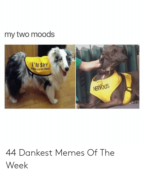Give Me Space: my two moods  PLEASE GIVE ME SPACE  NERVOUS 44 Dankest Memes Of The Week