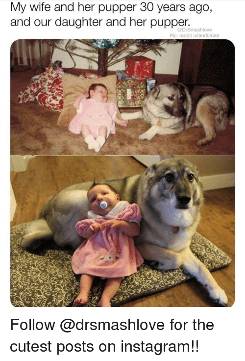Instagram, Memes, and Reddit: My wife and her pupper 30 years ago,  and our daughter and her pupper.  @DrSmashlove  Pic: reddit u/land0man Follow @drsmashlove for the cutest posts on instagram!!