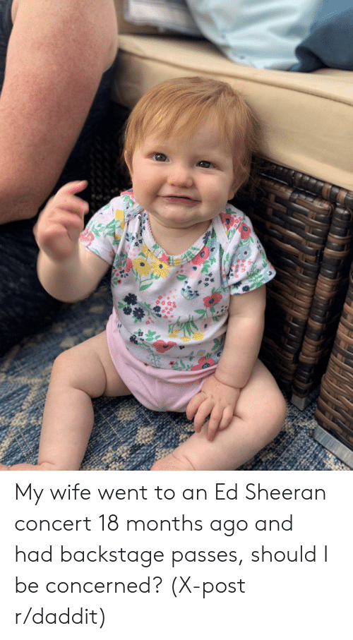Ed Sheeran, Wife, and Post: My wife went to an Ed Sheeran concert 18 months ago and had backstage passes, should I be concerned? (X-post r/daddit)