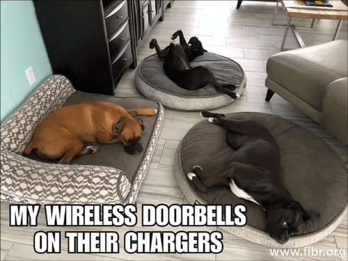 Memes, Chargers, and 🤖: MY WIRELESS DOORBELLS  ON THEIR CHARGERS  www.flbr:otg