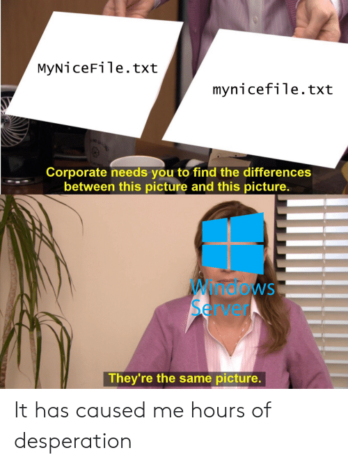 Windows, Desperation, and Corporate: MyNiceFile.txt  mynicefile.txt  Corporate needs you to find the differences  between this picture and this picture  Windows  Server  They're the same picture It has caused me hours of desperation