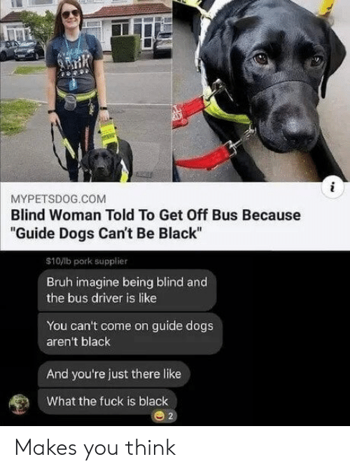 "Bruh, Dogs, and Black: MYPETSDOG.COM  Blind Woman Told To Get Off Bus Because  ""Guide Dogs Can't Be Black  $10/lb pork supplier  Bruh imagine being blind and  the bus driver is like  You can't come on guide dogs  aren't black  And you're just there like  What the fuck is black Makes you think"