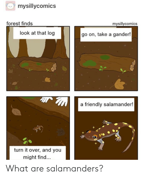 log: mysillycomics  forest finds  mysillycomics  look at that log  go on, take a gander!  a friendly salamander!  turn it over, and you  might find... What are salamanders?