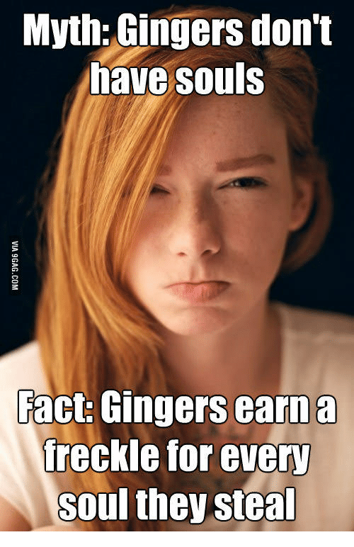 Ginger Snap Meme: Myth: Gingers don't  have souls  Fact: Gingers earn a  freckle for every  Soul they steal