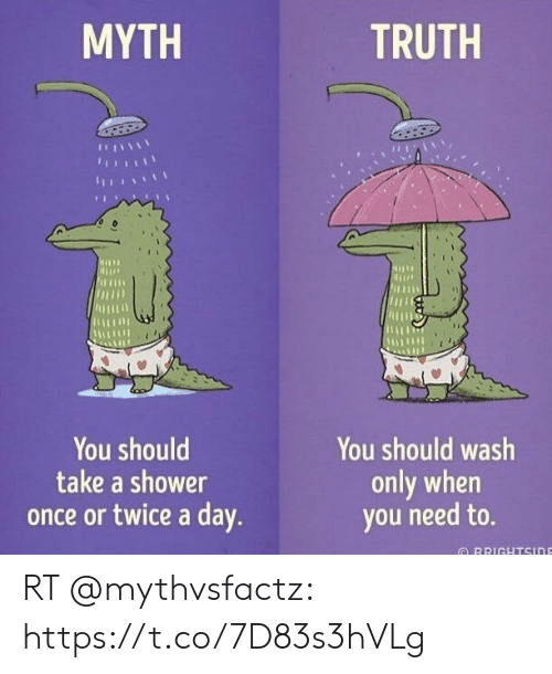 Shower, Truth, and Once: MYTH  TRUTH  Jtus  irmn  You should  take a shower  You should wash  only when  you need to.  once or twice a day  RRIGHTSinE RT @mythvsfactz: https://t.co/7D83s3hVLg