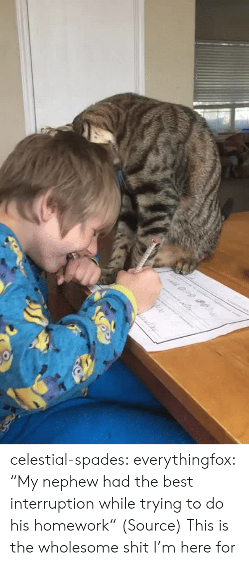 "Aww, Reddit, and Shit: n 0.99 celestial-spades:  everythingfox:   ""My nephew had the best interruption while trying to do his homework"" (Source)   This is the wholesome shit I'm here for"