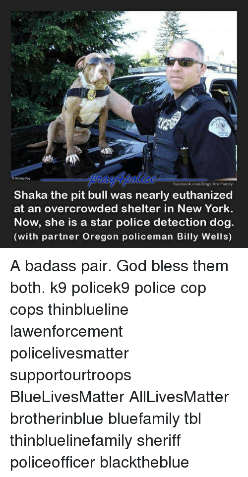All Lives Matter, Dogs, and Facebook: NA  o StubbyDog  facebook.com/Dogs Are Family  Shaka the pit bull was nearly euthanized  at an overcrowded shelter in New York.  Now, she is a star police detection dog.  (with partner Oregon policeman Billy Wells) A badass pair. God bless them both. k9 policek9 police cop cops thinblueline lawenforcement policelivesmatter supportourtroops BlueLivesMatter AllLivesMatter brotherinblue bluefamily tbl thinbluelinefamily sheriff policeofficer blacktheblue