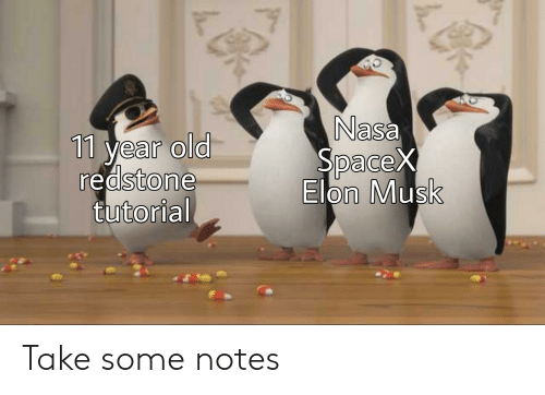 Reddit, Old, and Elon Musk: Na  sa  11 year old  Dace  redstone  Elon Musk  tutorial Take some notes