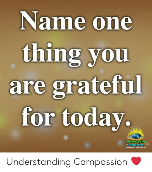 Memes, Compassion, and Understanding: Name one  thing you  are grateful  for todav.  Understanding  Compassion Understanding Compassion ❤️