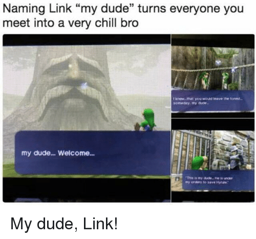 """Chill Bro: Naming Link """"my dude"""" turns everyone you  meet into a very chill bro  Iknew that you woud ieave the forest  someday my aae  my dude... Welcome... <p>My dude, Link!</p>"""