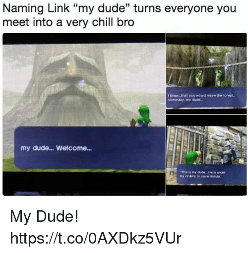 """Chill Bro: Naming Link """"my dude"""" turns everyone you  meet into a very chill bro  I knew .that you wouid leave the torest  someday, my dude  my dude... Welcome...  Thhs is my dude.. . He is under  my orders to save Hyrue My Dude! https://t.co/0AXDkz5VUr"""