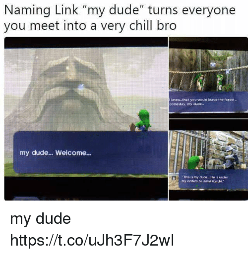 """Chill Bro: Naming Link """"my dude"""" turns everyone  you meet into a very chill bro  t knew...that you would leave the torest..  someday, my duae.  my dude... Welcome...  This is my dude.. . He is under  my orders to save Hyrule. my dude https://t.co/uJh3F7J2wI"""