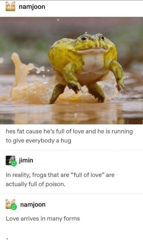 "Love, Fat, and Reality: namjoon  hes fat cause he's full of love and he is running  to give everybody a hug  jimin  In reality, frogs that are ""full of love"" are  actually full of poison  namjoon  Love arrives in many forms ."