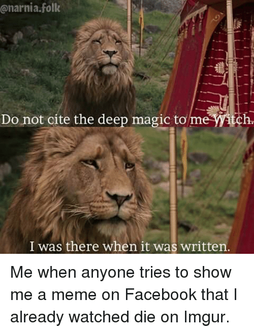 Facebook, Funny, and Meme: @narnia.folk  Do not cite the deep magic to me itch  I was there when it was written Me when anyone tries to show me a meme on Facebook that I already watched die on Imgur.