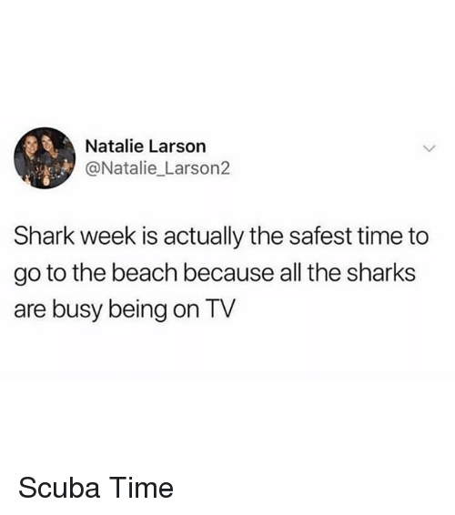 Funny, Shark, and Beach: Natalie Larson  @Natalie Larson2  Shark week is actually the safest time to  go to the beach because all the sharks  are busy being on TV Scuba Time