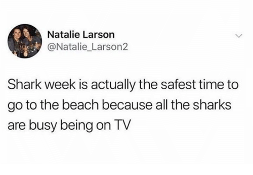 Shark, Beach, and Sharks: Natalie Larson  @Natalie Larson2  Shark week is actually the safest time to  go to the beach because all the sharks  are busy being on TV