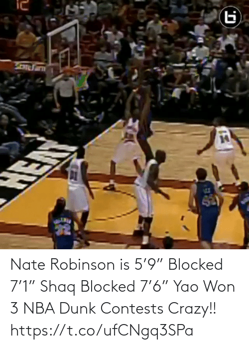 """🤖: Nate Robinson is 5'9"""" Blocked 7'1"""" Shaq Blocked 7'6"""" Yao  Won 3 NBA Dunk Contests  Crazy!!   https://t.co/ufCNgq3SPa"""