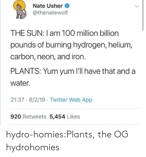 iron: Nate Usher  @thenatewolf  THE SUN: I am 100 million billion  pounds of burning hydrogen, helium,  carbon, neon, and iron.  PLANTS: Yum yum 'll have that and a  water.  21:37 8/2/19 Twitter Web App  920 Retweets 5,454 Likes hydro-homies:Plants, the OG hydrohomies
