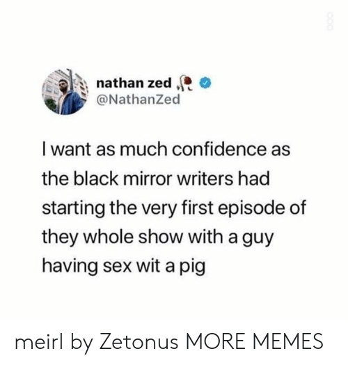 zed: nathan zed  @NathanZed  I want as much confidence as  the black mirror writers had  starting the very first episode of  they whole show with a guy  having sex wit a pig meirl by Zetonus MORE MEMES