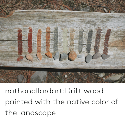 Native: nathanallardart:Drift wood painted with the native color of the landscape