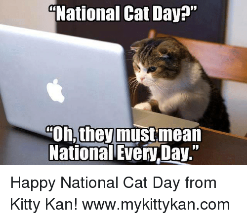 "Happy National Cat Day: National Cat Day?""  Oh, theymustmean  National Every Day."" Happy National Cat Day from Kitty Kan!  www.mykittykan.com"