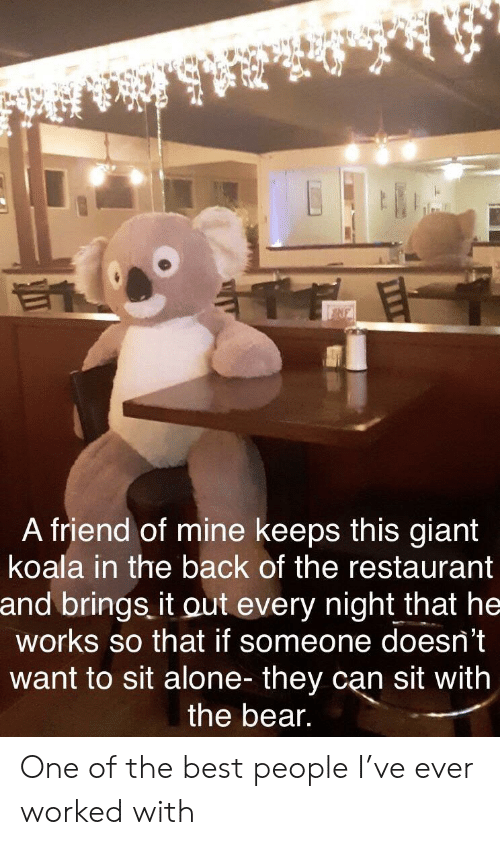 Being Alone, Bear, and Best: NE  A friend of mine keeps this giant  koala in the back of the restaurant  and brings it out every night that he  works so that if someone doesn't  want to sit alone- they can sit with  the bear. One of the best people I've ever worked with