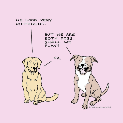 Shall We: NE LOOK VERY  DIFFERENT  BUT WE ARE  BOTH DOGS  SHALL WE  PLAY?  oK.  ti ir  @DRAWINGSoF DOGS