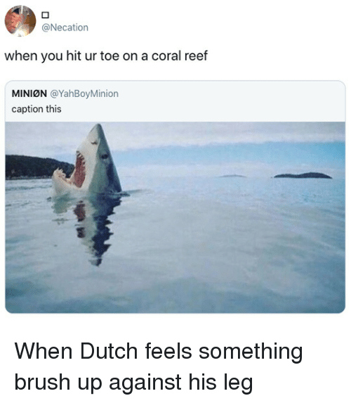 Minion, Dutch Language, and Coral: @Necation  when you hit ur toe on a coral reef  MINION @YahBoyMinion  caption this When Dutch feels something brush up against his leg