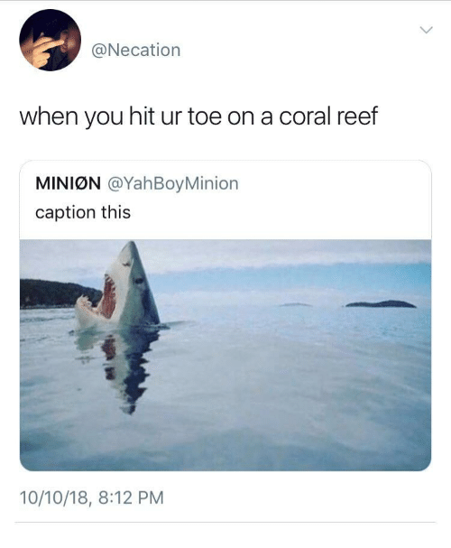 Mini, Coral, and Reef: @Necation  when you hit ur toe on a coral reef  MINIØN @YahBoyMinion  caption this  10/10/18, 8:12 PM
