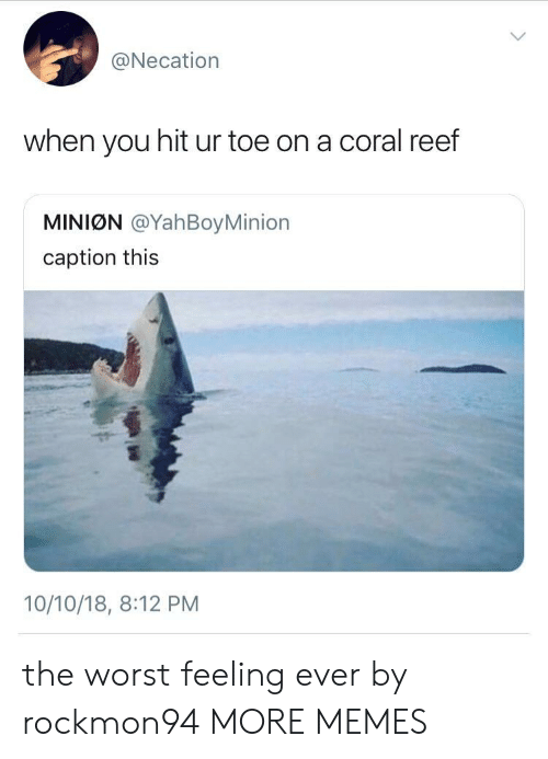 reef: @Necation  when you hit ur toe on a coral reef  MINIØN @YahBoyMinion  caption this  10/10/18, 8:12 PM the worst feeling ever by rockmon94 MORE MEMES