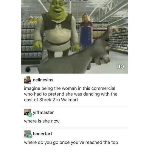 Where Is She: neilnevins  imagine being the woman in this commercial  who had to pretend she was dancing with the  cast of Shrek 2 in Walmart  yiff master  where is she now  boner fart  where do you go once you've reached the top