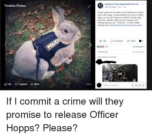 "Bad, Crime, and Easter: neline Photos  Spokane Police Department K9 Unit  Like This Page . April 1 .  Please welcome our latest crime-fighting tool, police  bunny B9 Hopps. Unconventional, you say? Cutting  edge, we say. B9 Hopps is certified in Easter egg  detection, stealthy albeit bouncy tracking, and  making bad guys go, ""What the-- is that a rabbit  chasing me?"" #badbunsbadbunswhatchagonnado  Like Comment Share  Chronological  1,408 Shares  247 Comments  View previous comments  1 GIF İ  Who's that then?  cD Like  -Comment  、Share  Options  Write a comment... If I commit a crime will they promise to release Officer Hopps? Please?"