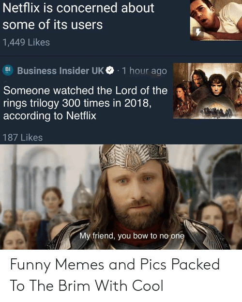 bow: Netflix is concerned about  some of its users  1,449 Likes  Business Insider UK  1 hour ago  BI  Someone watched the Lord of the  rings trilogy 300 times in 2018,  according to Netflix  187 Likes  My friend, you bow to no one Funny Memes and Pics Packed To The Brim With Cool