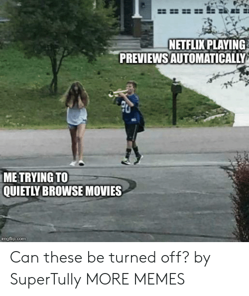 Dank, Memes, and Movies: NETFLIX PLAYING  PREVIEWSAUTOMATICALLY  ME TRYING TO  QUIETLY BROWSE MOVIES  imgfip.com Can these be turned off? by SuperTully MORE MEMES
