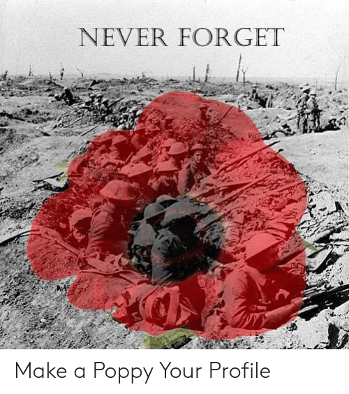 Memes, Never, and 🤖: NEVER FORGET Make a Poppy Your Profile